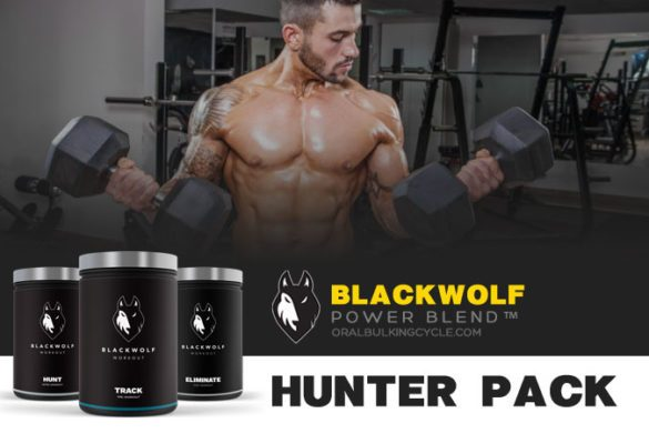 blackwolf hunter pack for men