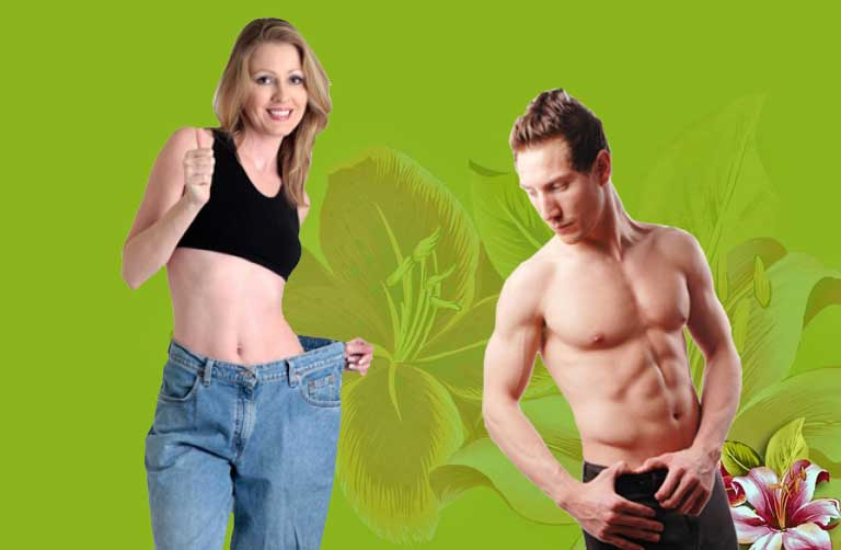 Garcinia cambogia extract and acid reflux